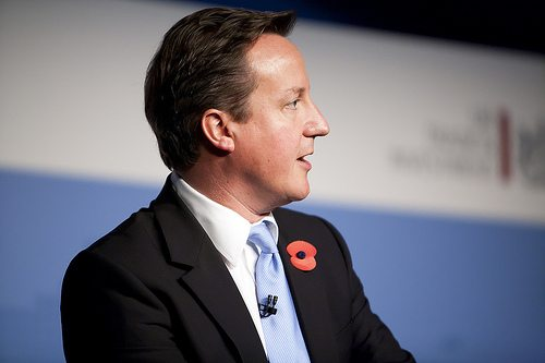 Is there a missing link in David Cameron's plans?