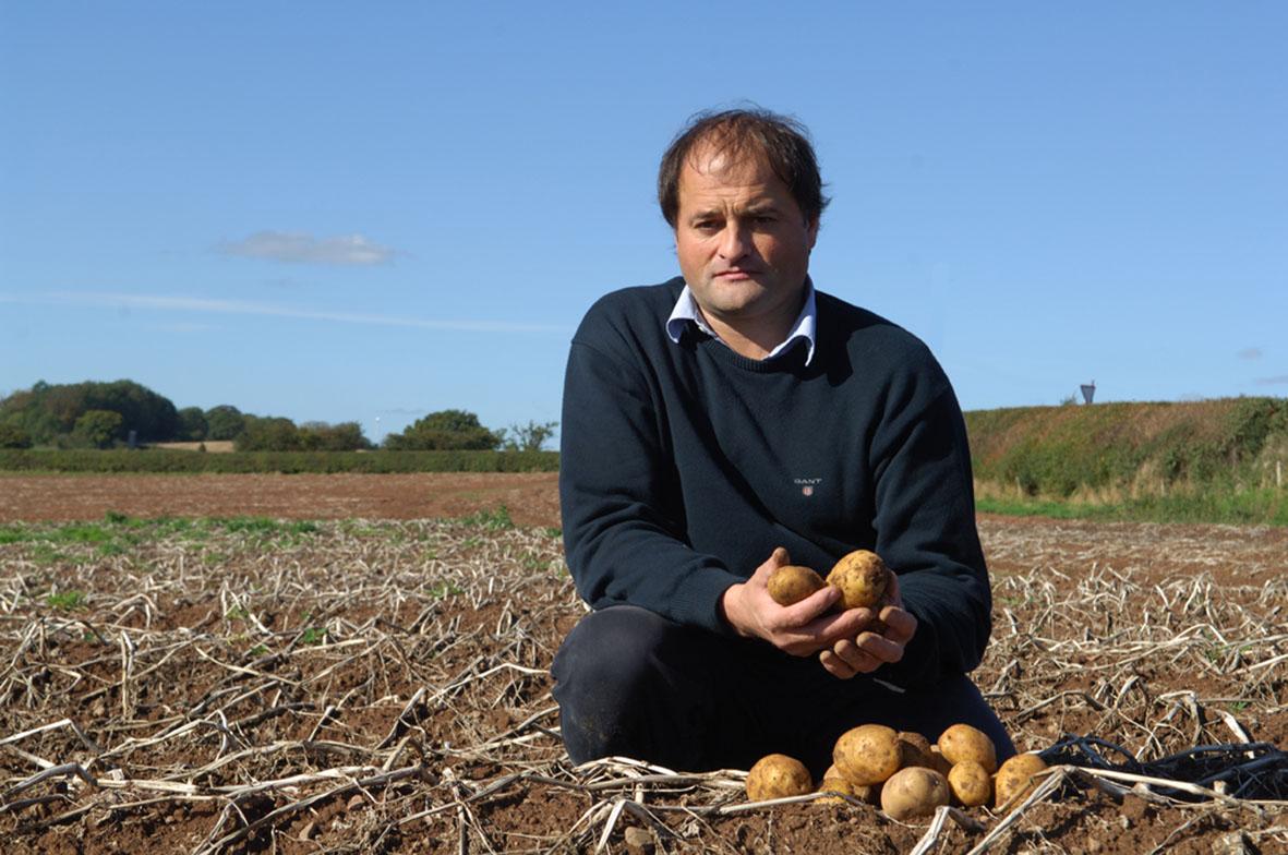 Potato entrepreneur plans vodka petrol