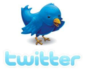 Twitter unveils top trends of 2010