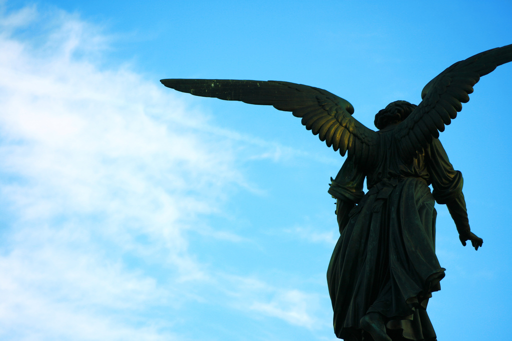 """Angels in desperate need of """"Angel Academies"""""""