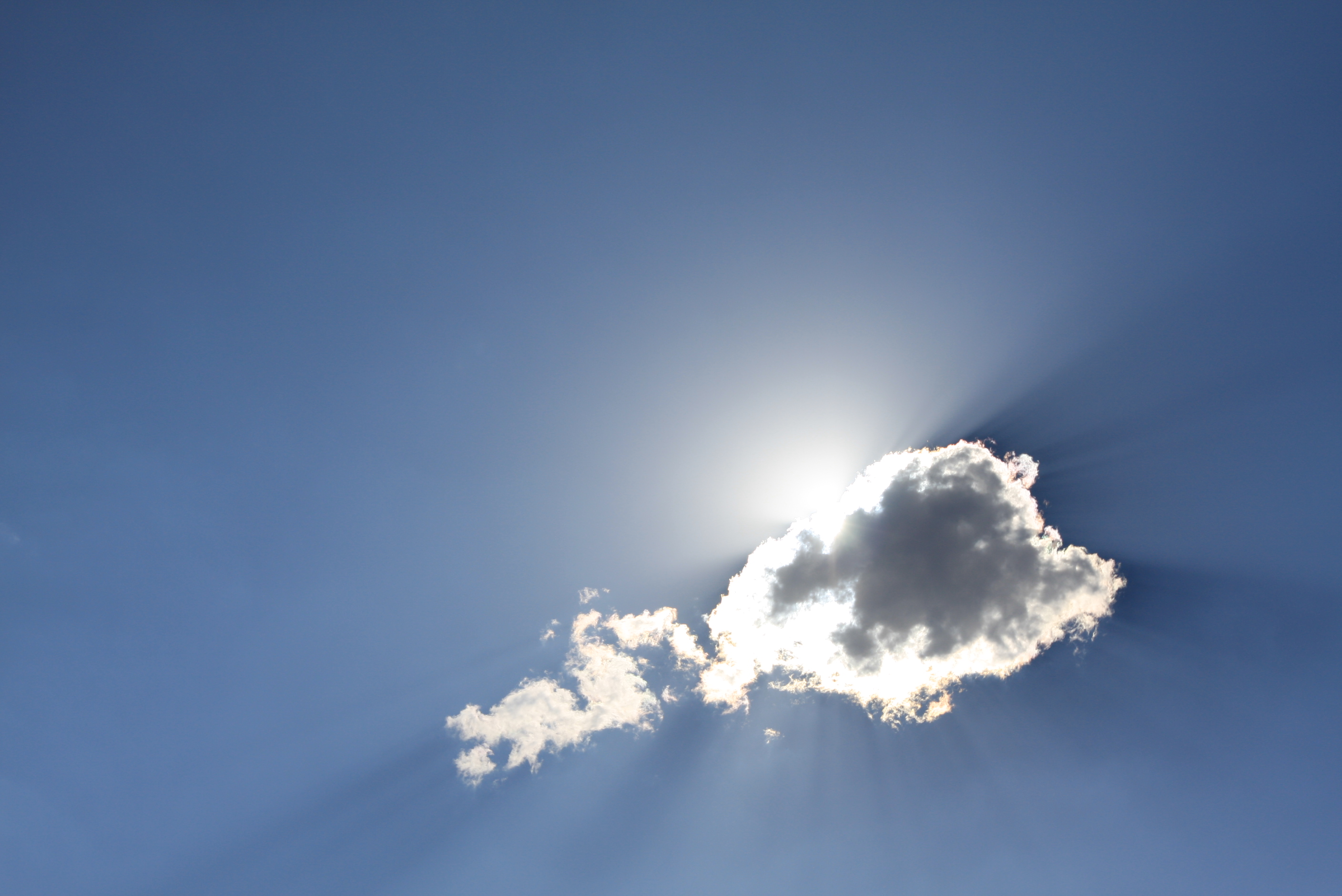 Business Growth Plan: Prepare for the cloud