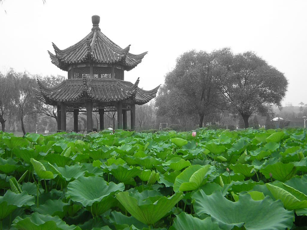Overcoming China's socio-economic challenges