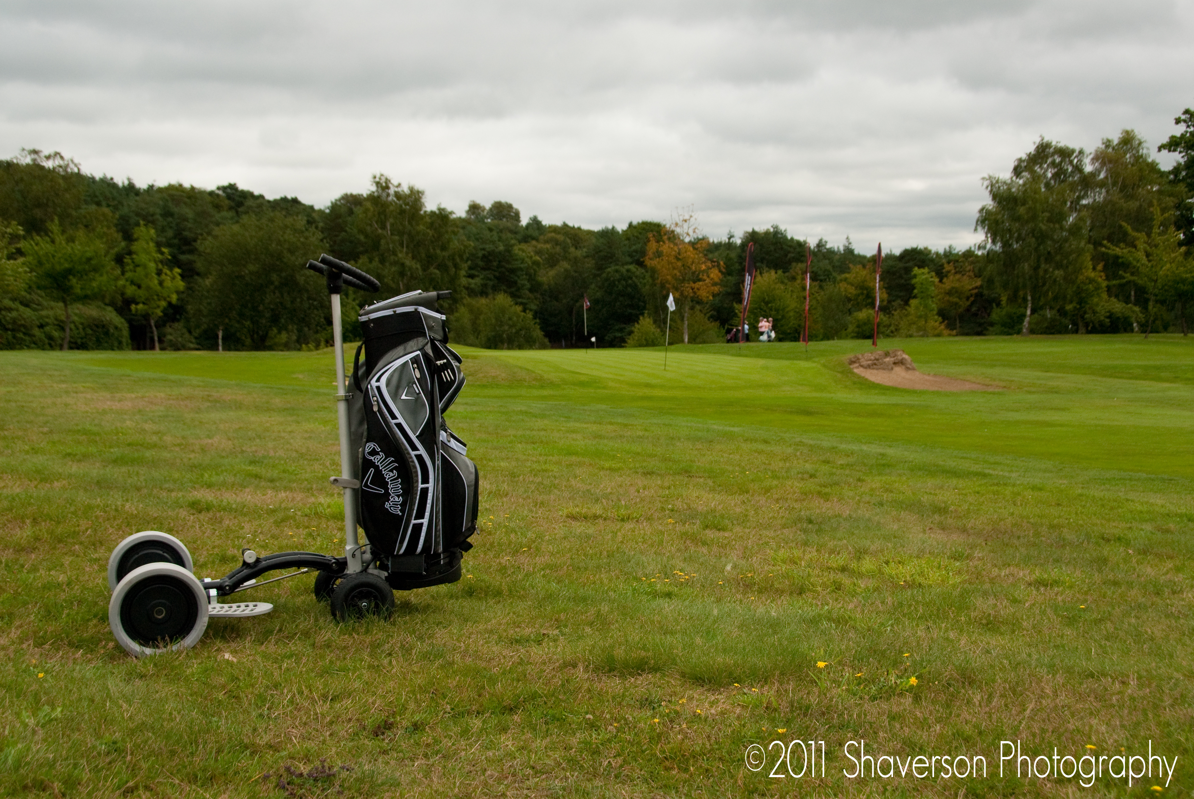 Idea of the week: powered golf trolley