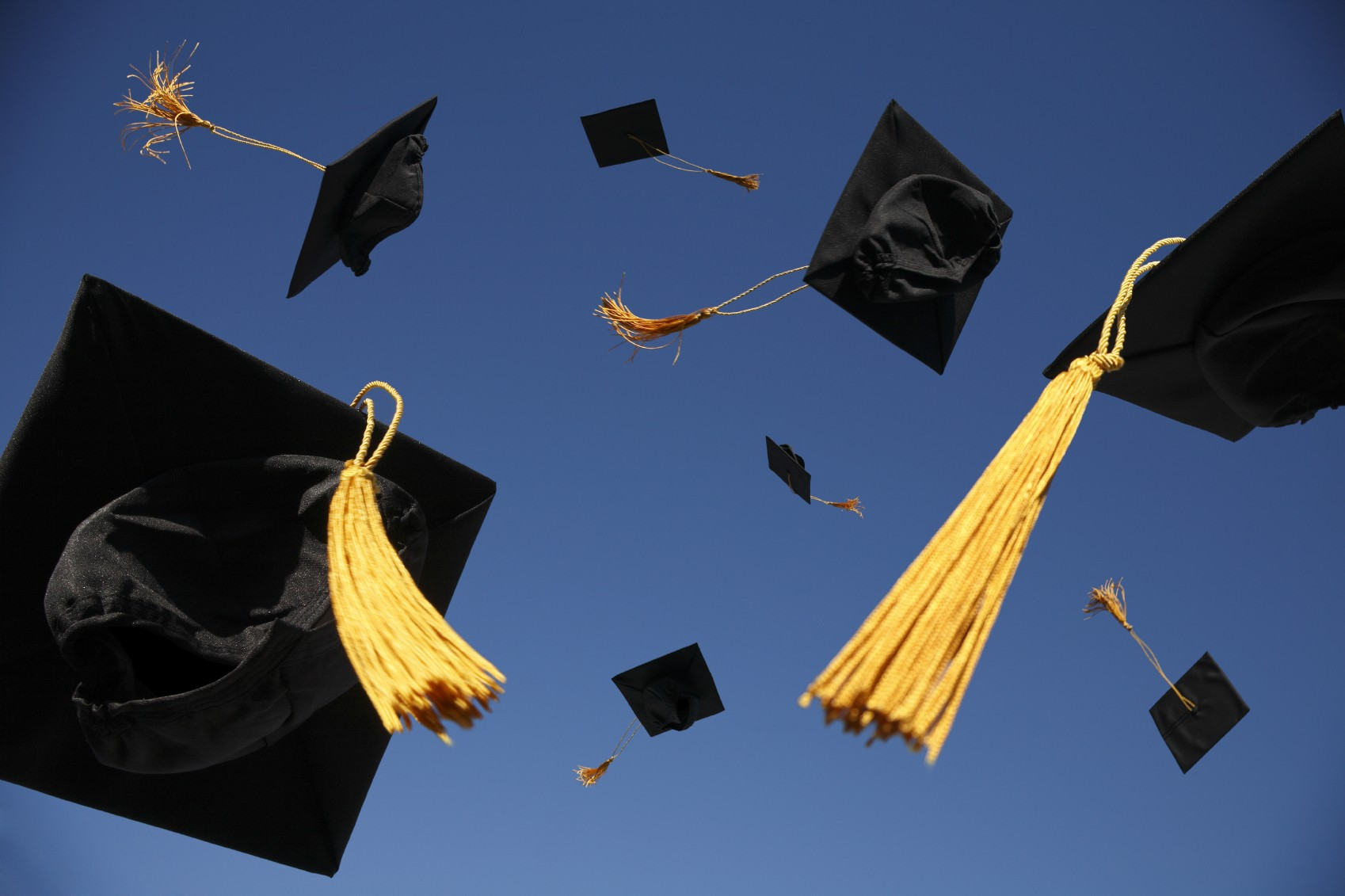 5 reasons why every small business should hire a graduate