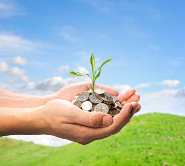 SEIS: The world's most generous scheme for investors and businesses?