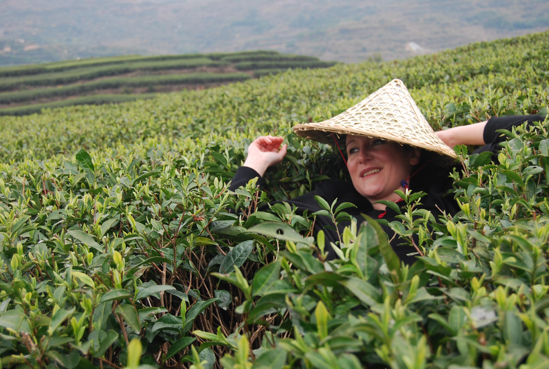 The entrepreneur selling tea to China