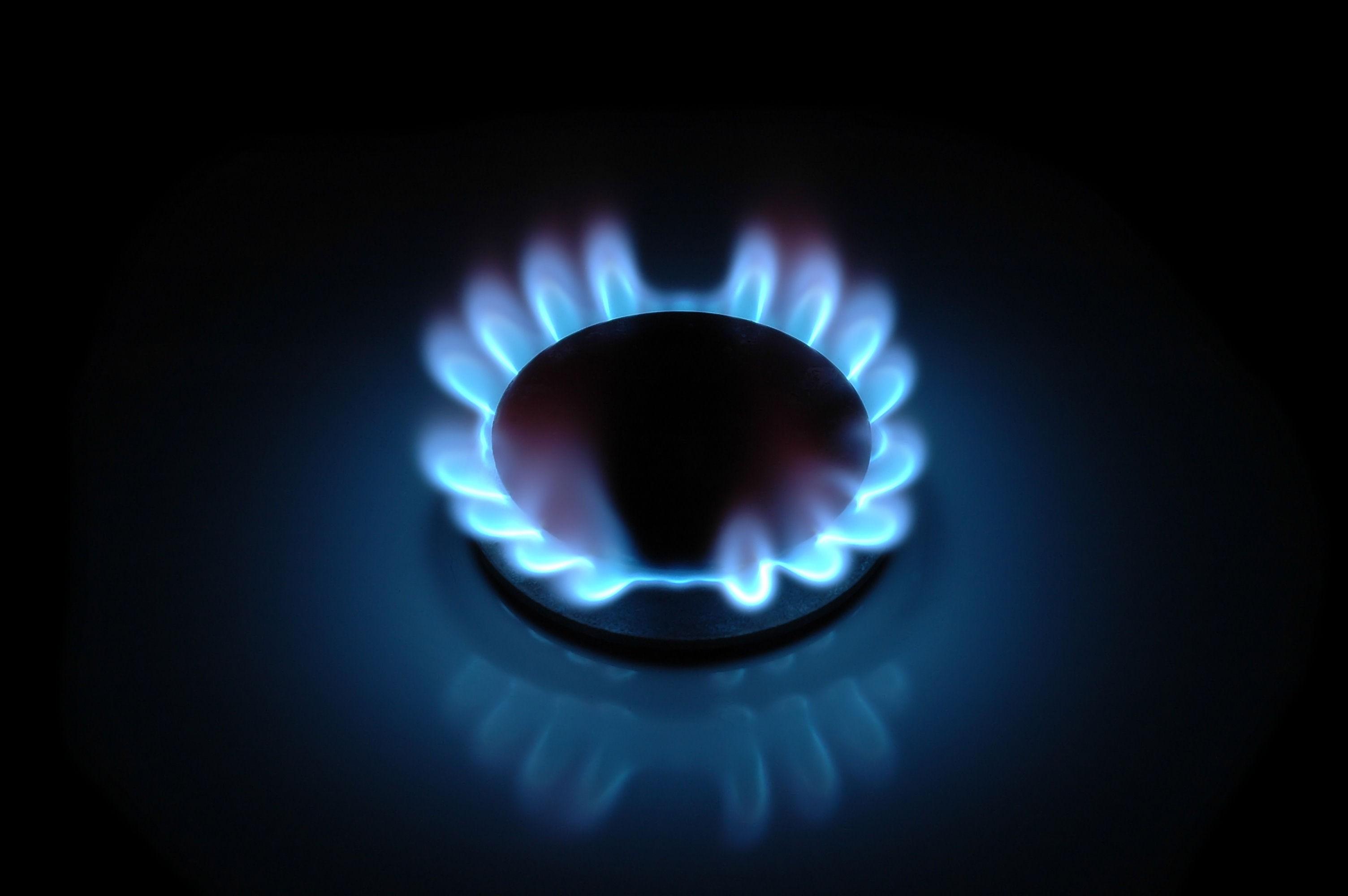 """Osborne needs to address rising """"profit parasite"""" energy costs"""