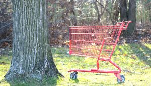 Turning cart abandoners into high-value purchasers