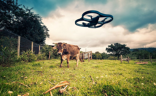 The potential of drones in industrial sectors