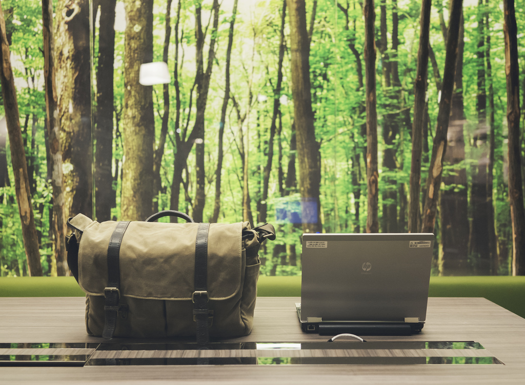 How to find an eco-friendly (and cost-effective) office