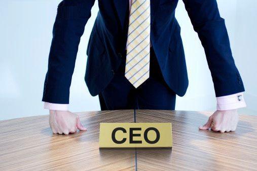 CEOs undergo fewer checks than graduates when being hired