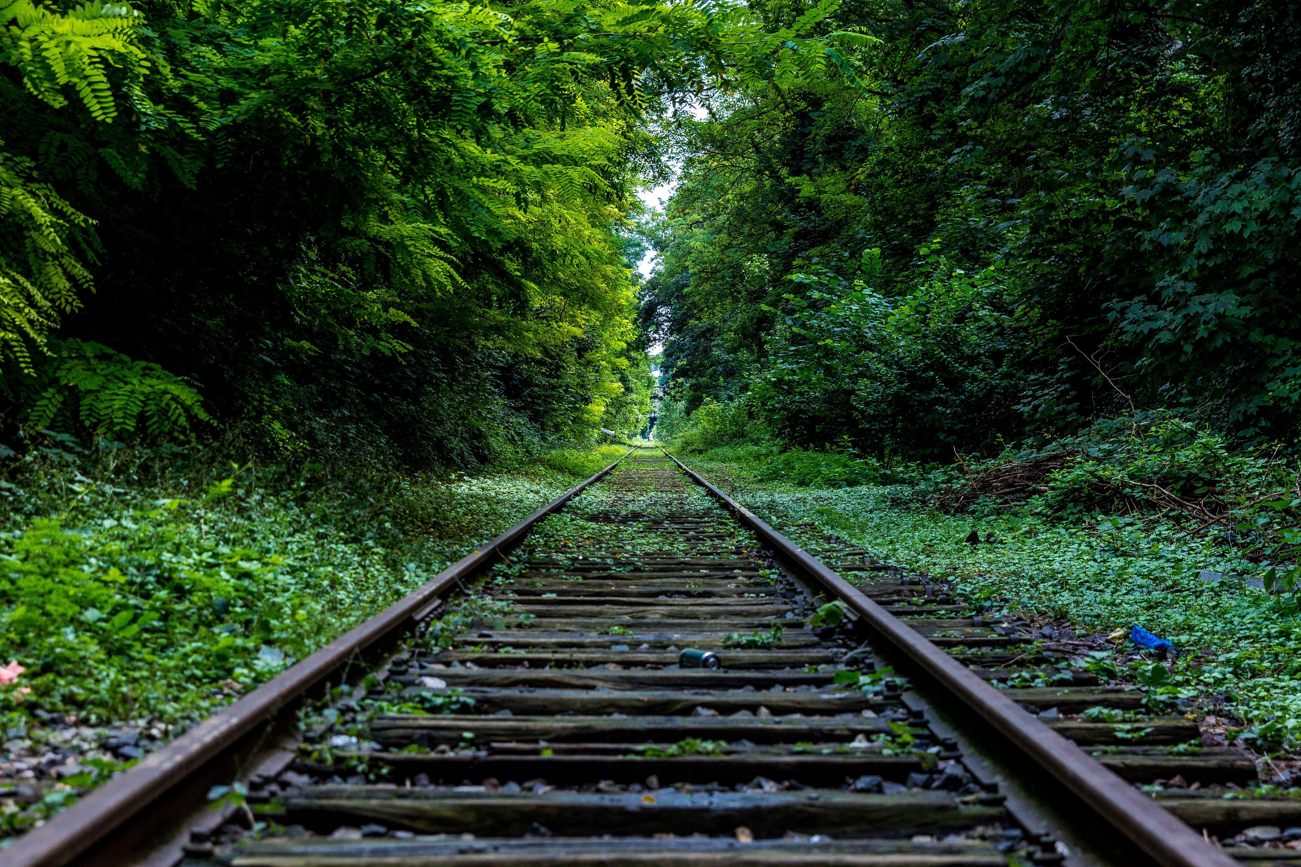 The road ahead: How to achieve sustained growth in a startup