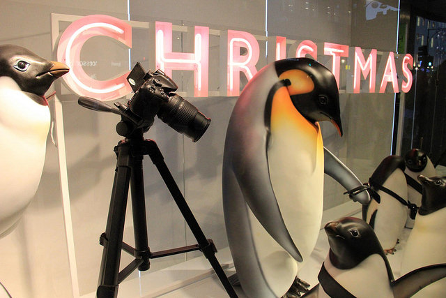 "Shackleton brand taunts ""John Lewis's softy penguin Monty"""