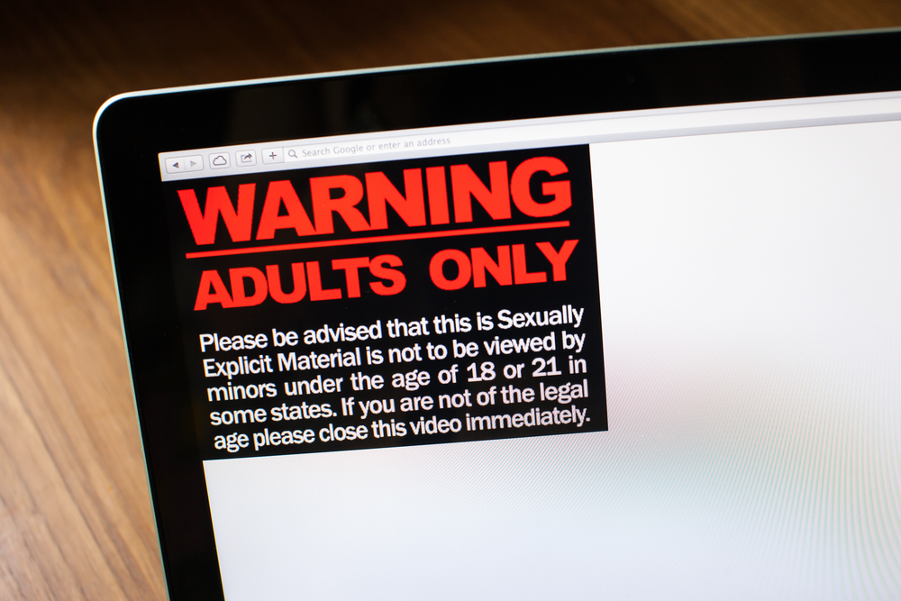 Nearly one in ten UK workers watch porn at work despite knowing it's risky