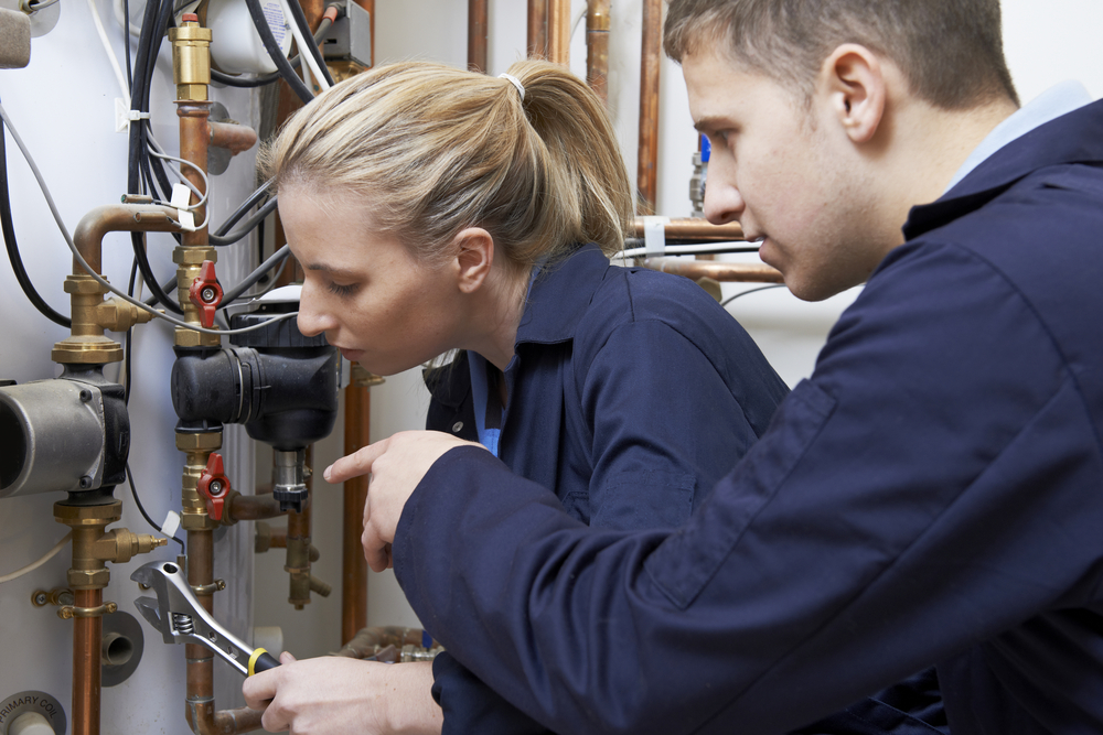 Are your expectations too high Firms must look for potential greatness in apprentices