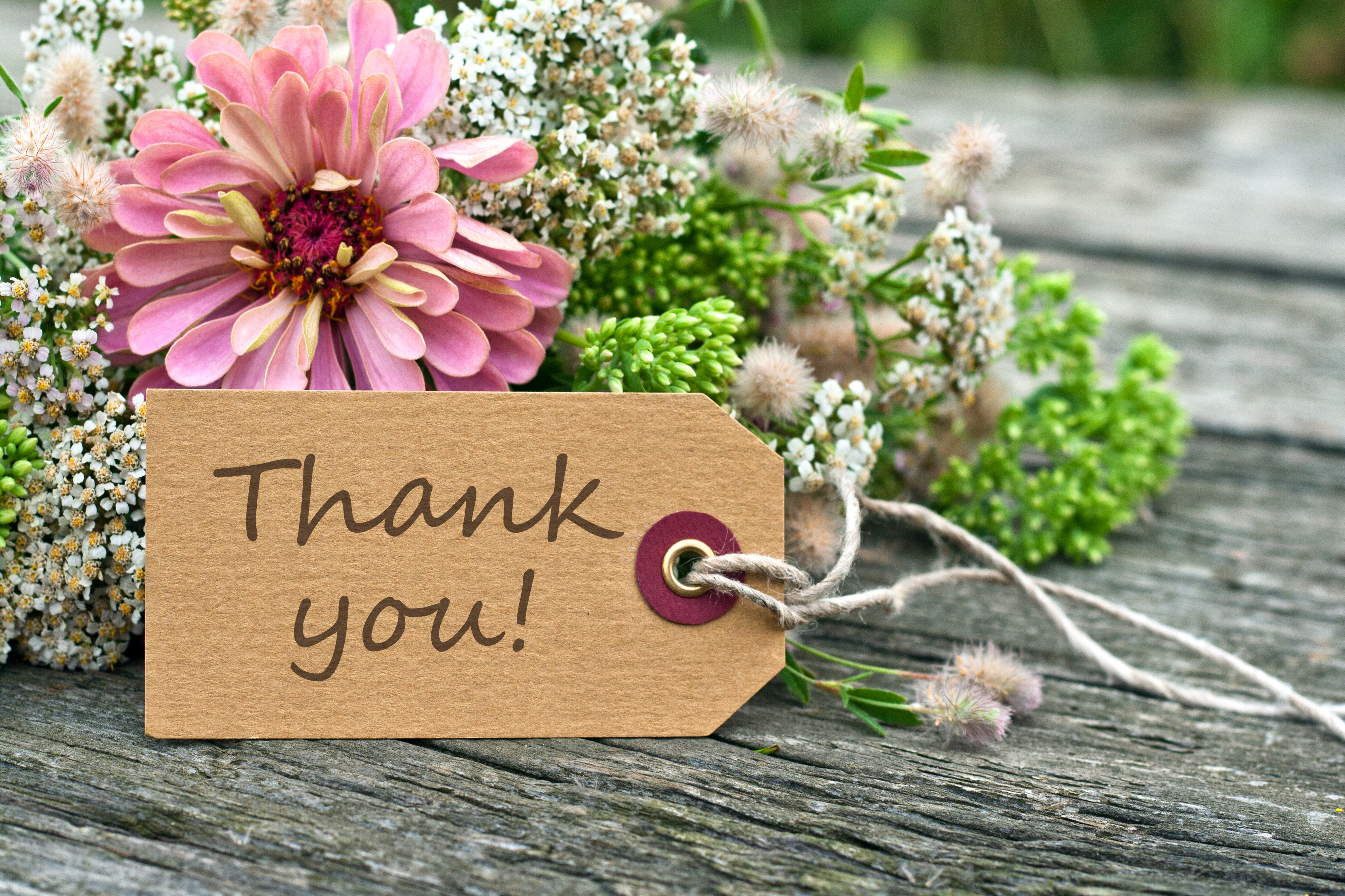 Three reasons that saying thank you is vital for business success
