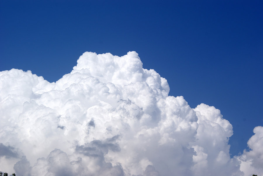 SMEs could revolutionise customer interactions with cloud