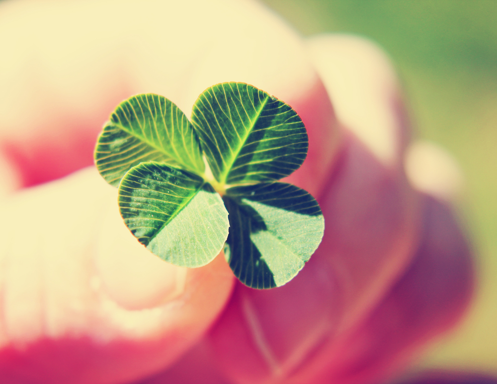 Why it pays to acknowledge luck is a factor to your success