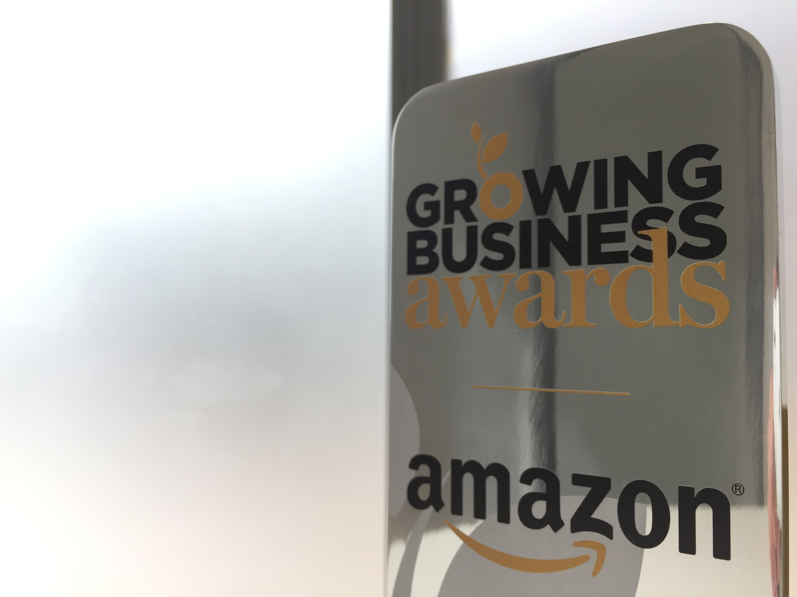 Go Ape, MVF and Larsson & Jennings lauded at Amazon Growing Business Awards 2016