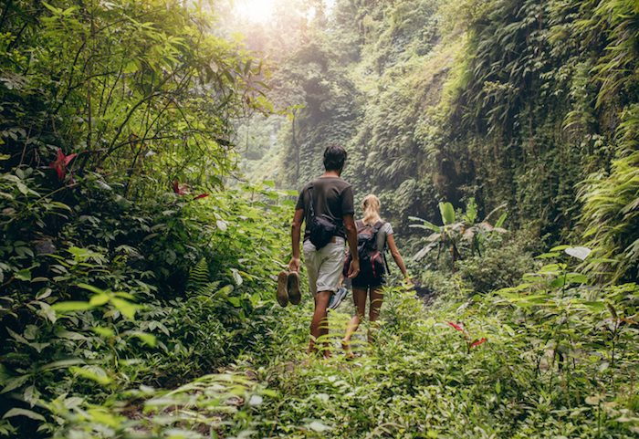 Following the audit trail when trekking into the uncharted GDPR jungle