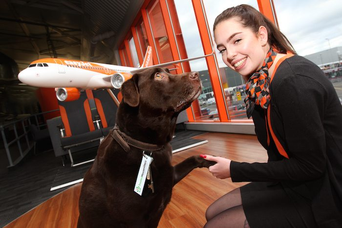 TrustedHousesitters secures growth partnership with easyJet