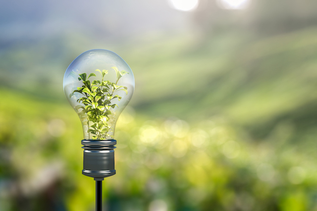 Why are SMEs failing to lead greener lives?