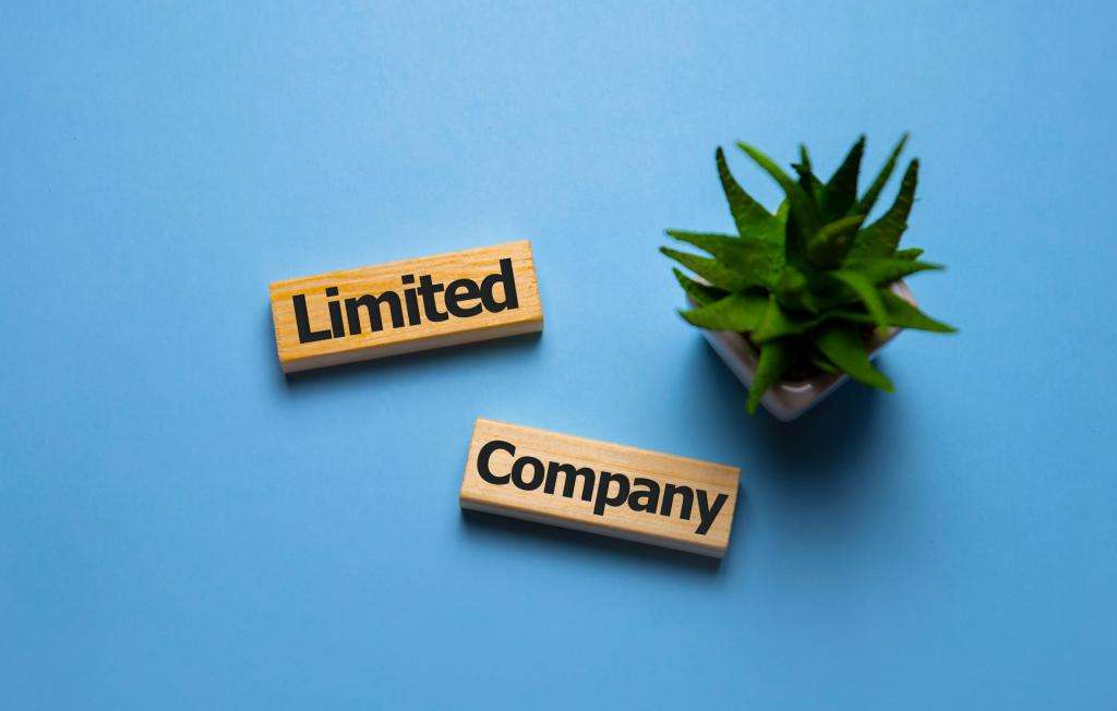 Investing in shares through a limited company