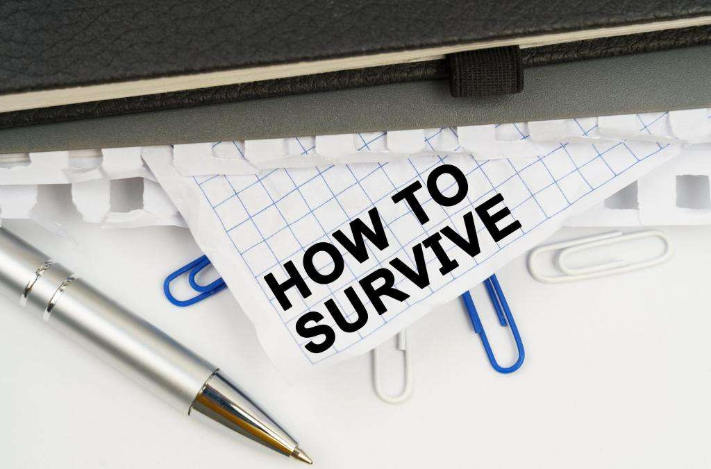 Business survival strategies- what are they?